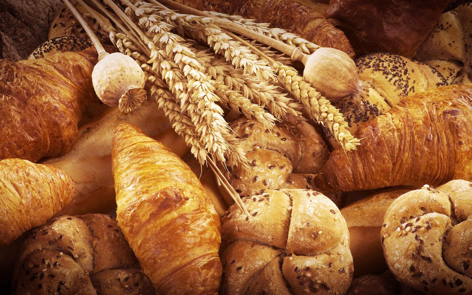Технология производства хлеба