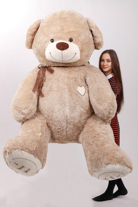 «Тедди», уходящие с молотка: самые дорогие плюшевые медведи